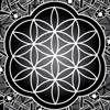 FLOWER OF LIFE Lady